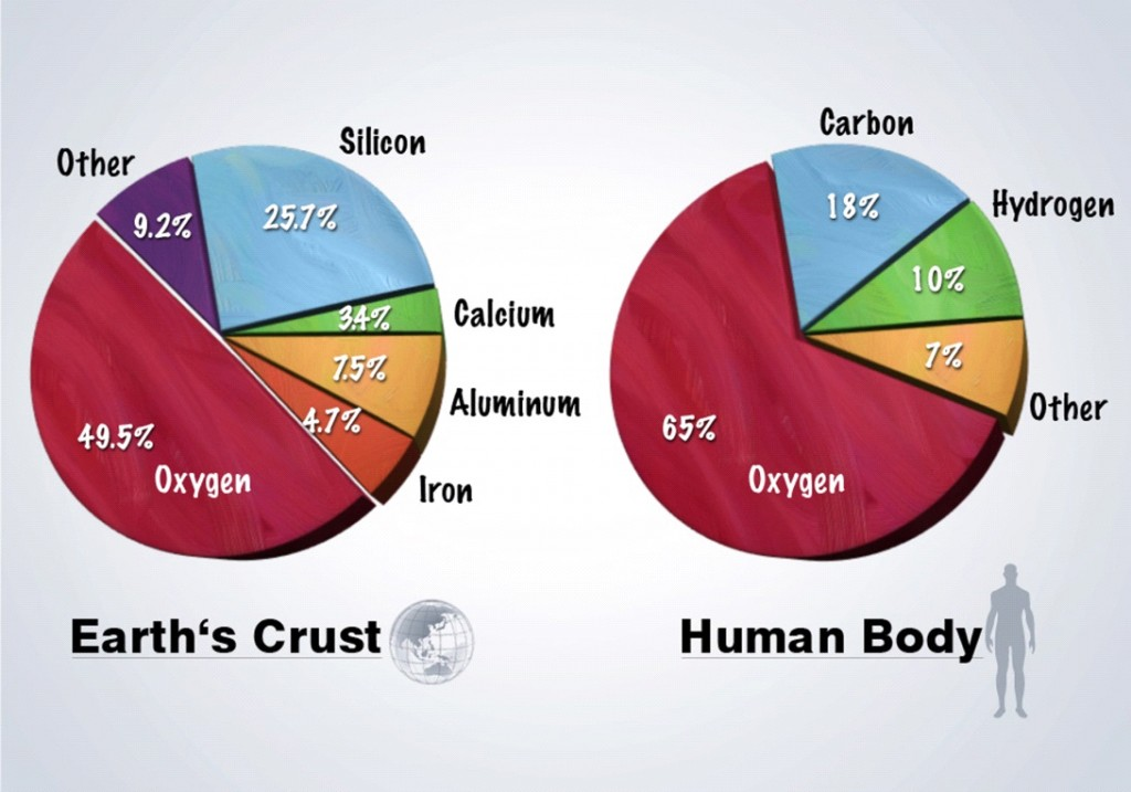 Minerals on Earth's Crust and in Human Body