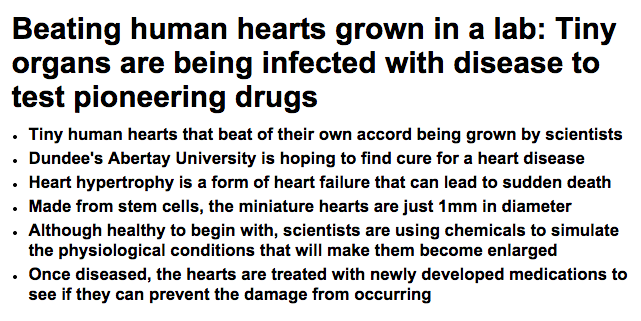 Source: http://www.dailymail.co.uk/sciencetech/article-2669350/Beating-human-hearts-grown-lab-Tiny-organs-infected-disease-test-pioneering-drugs.html